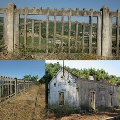#old #trainstation #savage #forest #fence #radical #walk #portugal #instagood