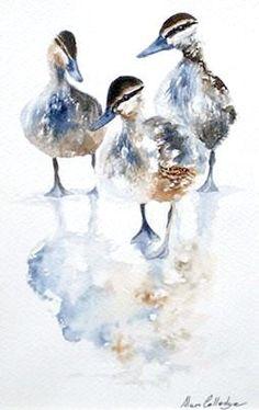 C - Daddlers, Alan Colledge (watercolour) Watercolor Bird, Watercolor Animals, Watercolor Paintings, Watercolours, Watercolour Illustration, Watercolor Techniques, Art Techniques, Art Canard, Guache