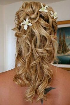 orchid curls
