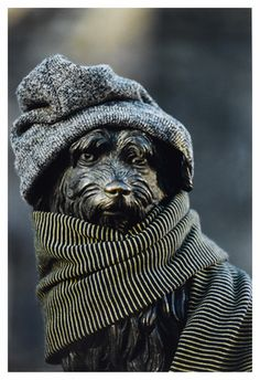 This is a photograph by a member of the Edinburgh Photographic Society. Greyfriars Bobby, Visit Edinburgh, Scottie, Great Britain, Brave, Sculpting, Scotland, Cool Art, Ireland