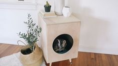 "DIY Modern Plywood Kitty Litter Box Should seal box in event of ""accidents"". Also need room to store extra litter & scoops, etc. Hiding Cat Litter Box, Diy Litter Box, Plywood Boxes, Diy Cat Tree, Upcycled Home Decor, Cat Furniture, Furniture Plans, Furniture Websites, Furniture Movers"