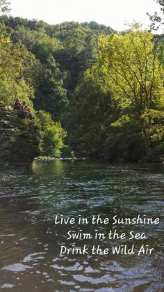 "{""Live in the Sunshine, Swim in the Sea, Drink the Wild Air"" ~ Ralph Waldo Emerson}"