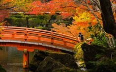 Autumn in Japan: travel photography article to inspire discovering the best destinations to enjoy red Momiji. The DaigoJi temple, Kyoto.