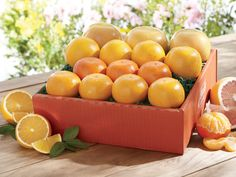 Big 4 Flavor Variety Box | #Orange Variety #Gift - Hale Groves #citrusfruit