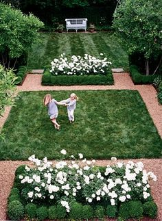 A green garden with white Iceberg Roses. my entire landscape is based on green w/white accents. Formal garden style for a simple small backyard