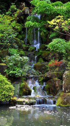 Ayurvedic Herbs for Dissolving Stress Beautiful Waterfalls, Beautiful Landscapes, Beautiful Gardens, Love Garden, Water Garden, Shade Garden, Garden Waterfall, Backyard Water Feature, Fantasy Landscape