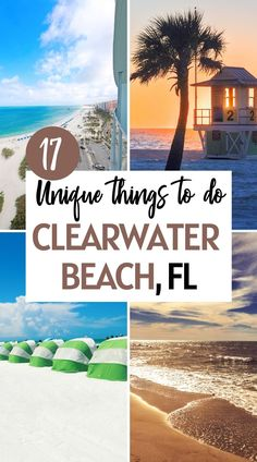 Heading to Florida soon? Discover one of the best beaches in the USA and the most unique things to do in Clearwater Beach. fun things to do in clearwater florida | things to do in clearwater florida bucket lists | what to do in clearwater florida | restaurants in clearwater florida | Hotels in clearwater beach florida | Winter dolphins in Clearwater florida | Things to do in Clearwater Beach Florida | clearwater beach florida things to do family vacations | pictures clearwater beach florida Florida Hotels, Visit Florida, Florida Vacation, Vacation Spots, Canada Travel, Travel Usa, Travel Tips, Travel Destinations, Cool Places To Visit