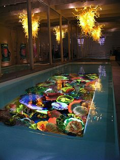 I got to experience Dale Chiluly Exhibit at St Louis Botantical Gardens...Mist fascintating exibit I have ever seen... He is incredible ...Lap Pool, Dale Chihuly