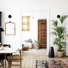 Love the large plant and brown old wardrobe