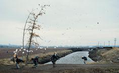 """Jeff Wall dans """"un soudain coup de vent"""" Fait référence à une estampe de hokusai """"saisi par le vent"""""""