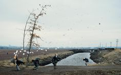 Jeff Wall, A sudden gust of wind (after Hokusai), 1993. Transparency in light box, unique state. 250 x 397 cm. Tate, London. Purchased with the assistance from the Patrons of New Art through the Tate Gallery Foundation and from the National Art Collections Fund 1995.