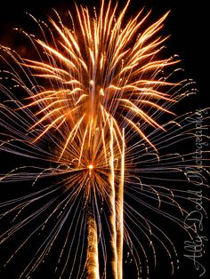 Fireworks on River Street --- Savannah --- Ally Dodd Photography