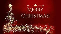 #merrychristmas #merrychristmas2020 #merrychristmasgreetings #merrychristmasecards #merrychristmascards #christmas2020 #christmasgreetings #christmaswishes #christmasquotes #christmascaptins #christmascaptions #bestchristmasimages #merrychristmasimages #merrychristmaspics #merrychristmaspictures #merrychristmasphotos #merrychristmassanta Merry Christmas Wishes Messages, Merry Christmas Wishes Images, Christmas Text, Xmas Greetings, Merry Christmas Greetings, Very Merry Christmas, Christmas Quotes, Christmas Pictures, Christmas 2019