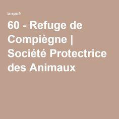 60 - Refuge de Compiègne   Société Protectrice des Animaux