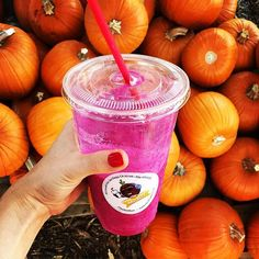 """Feelin' Fall & enjoying a much needed detox recovery ➖➖➖➖➖➖➖➖➖➖➖➖ Currently drinking at: Mad Beet, Pacific Beach ➖➖➖➖➖➖➖➖➖➖➖➖ HERS: """"Imagine Dragons Fruit"""" pineapple juice, honey, organic pitaya, strawberry, banana"""
