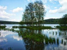 Le lac d'Aydat (eauvergnat.fr)