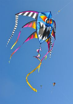 A cacophony of eye-arresting details in this multi-winged single-surface bowed kite... T.P. (my-best-kite.com)