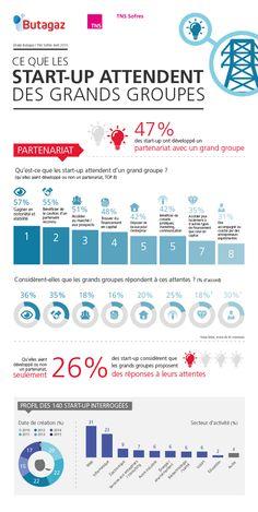 etude-tns-sofres-butagaz-infographie-ce-que-les-startups-attendent-des-grands-groupes-20150506