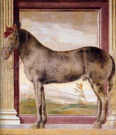 """Giulio Romano: The Horse """" Morel Favorito""""  (c.1526)"""