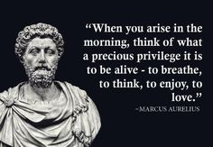 Which Marcus Aurelius Quote Should Be Your Motto?