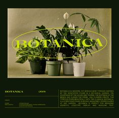 Botanica is a modern, yet serious serif typeface inspired by the vegetation found in a botanical garden: the sharpness of the leaves and thorns on roses, the softness of the bends and curves the stems and flowers create. This typeface pairs beautifully w… Web Design, Graphic Design Layouts, Graphic Design Posters, Graphic Design Inspiration, Book Design, Typography Design, Layout Design, Lettering, Typography Fonts
