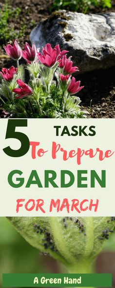 Gardening Tasks and Projects For March #springgarden #gardening #gardenchecklist #gardening #gardeningtips #agreenhand