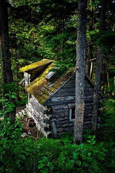 Forest Cabin, Girdwood, Alaska