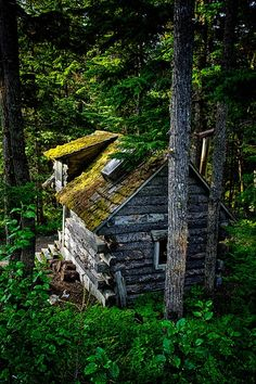Forest Cabin, Girdwood, Alaska  photo via jen.  Looks so fun.  It would be fun to be snowed in and have to survive! (As long as you had everything you needed, haha)