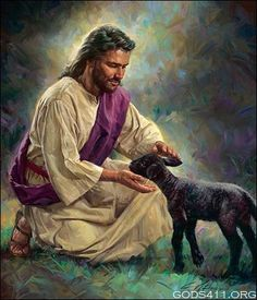 Jesus with Sheep. NOT THE SAME AS TRUMP WITH SHEEP. NOT EVEN CLOSE.