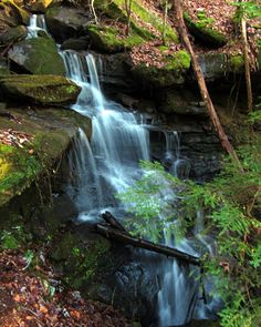 """Sam Calhoun on Instagram: """"One of around 20 or so waterfalls from my last hiking trip.  This one was toward the end of the hike.  Bankhead National Forest, AL.…"""""""