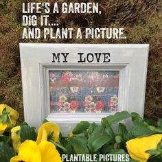 Beautiful Weather-Resistant Picture Frames~Special Occasion, Memorial Gardens, Flower Beds, Floral Arrangements, Container & Graveside ~ www.plantablepictures.com
