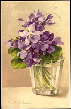 I can still smell the fragrance of the violets which crept between the stones of the steps down the side of the kopje in the garden Künstler Ak Catharina Klein, Violette Blumen im Glas
