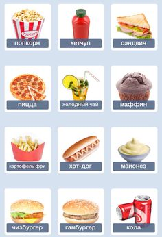 Junk food vocabulary