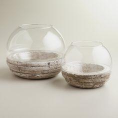 Round Glass and Cement Terrarium, 6in