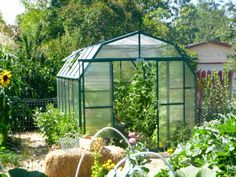 This Grandio Elite Greenhouse was installed directly in the garden and the plants are thriving!