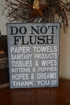 Hey, I found this really awesome Etsy listing at http://www.etsy.com/listing/159684058/do-not-flush-septic-system-rules-sign