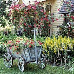Goat cart. Beautiful garden