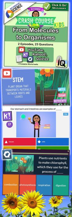 With Interactive Quizzes, Just Point and Click for instant Mini-Lessons with Game-Based Assessment! � For each YouTube episode, the quiz is available using two separate platforms; Kahoot and Quizizz. Every multiple-choice question includes a related screenshot from the video. ... IQ - Interactive Quizzes on TpT