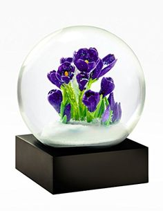 Crocus Flowers Snow Globe by CoolSnowGlobes CoolSnowGlobes http://www.amazon.com/dp/B00MV7OV0A/ref=cm_sw_r_pi_dp_I9qpvb1Z1ZHEM