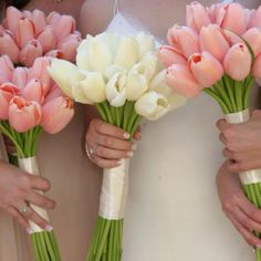 Lovely tulip bouquets - would be so pretty with dove grey dress  white or cream or gold ribbon