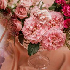 """77 curtidas, 5 comentários - As Floristas por Carol Piegel (@asfloristas) no Instagram: """"Para tudo!!! ⠀⠀⠀⠀⠀⠀⠀⠀⠀ Vem apreciar a beleza dessas rosas 💕 ⠀⠀⠀⠀⠀⠀⠀⠀⠀ ⠀ Foto @carolritzmann…"""" Floral Wreath, Wreaths, Instagram, Flowers, Plants, Design, Home Decor, Florists, Everything"""