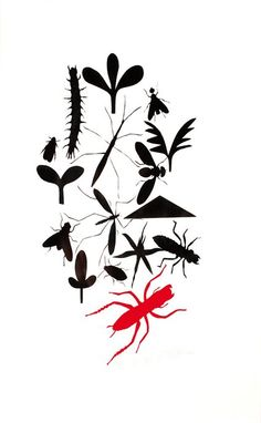 richard killeen - insects Positive And Negative, Negative Space, Nz Art, Reference Images, Screenprinting, Bats, Art School, Drawing Ideas, Printmaking