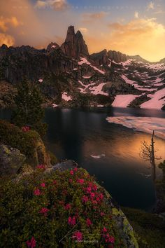 Blooming Spires by David Richter on 500px