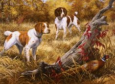 Hunting Art, Hunting Dogs, Hunting Birds, Hunting Painting, Quail Hunting, Pheasant Hunting, Dog Wallpaper, Animal Wallpaper, Wildlife Paintings