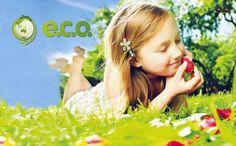 Calendar for EcoGroup 2012