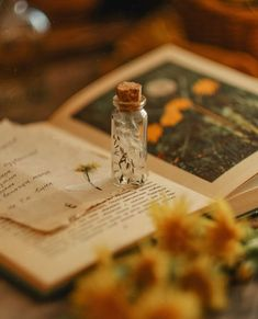 Nature Aesthetic, Witch Aesthetic, Flower Aesthetic, Book Aesthetic, Aesthetic Images, Aesthetic Collage, Aesthetic Vintage, Aesthetic Photo, Aesthetic Drawing