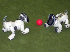 realizamos torneos de Aibo en todo tipo de deportes miniaturas especiales para ellos.