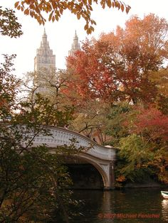 My favorite location in NYC.  Bow Bridge in Central Park.
