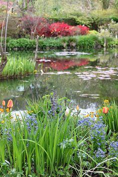 Visit Monet's House and Gardens (Maison et Jardins de Claude Monet) in Giverny, France. Claude Monet, Monet Garden Giverny, Giverny France, Pond, Europe, Normandy, Places, Travelling, House