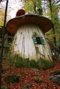 Fairy house I want one